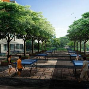学校园景观规划设计