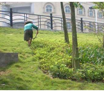 园林施工养护